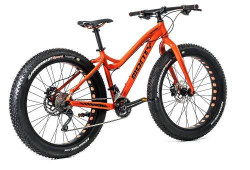 Bicicleta de montaña Fattrack | Vista trasera